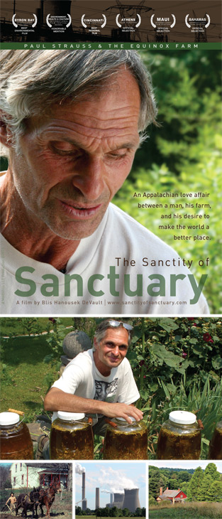sanctity of sanctuary cover collage